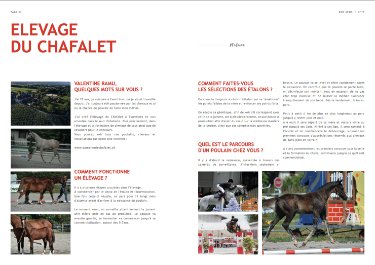 Article Chafalet